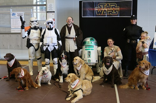 Star Wars and Dogs 2017